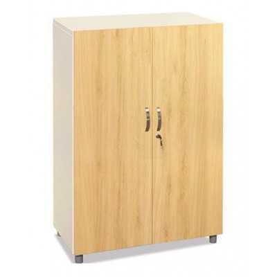 Tủ trung khung sắt cánh gỗ TSG03-2